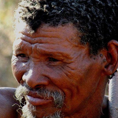 Tipos de humanos bosquimanos