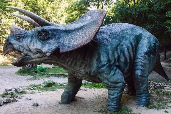 Triceraptor horridus